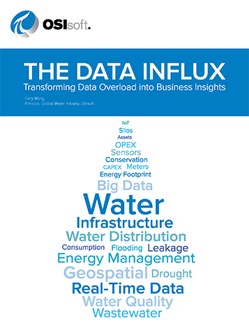 The Data Influx: Transforming Data Overload into Business Insights